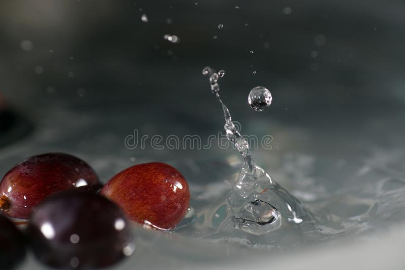 Grapes are fruits of the grapevine stock photography