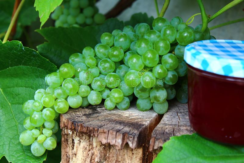Grapes and grape jelly stock photography