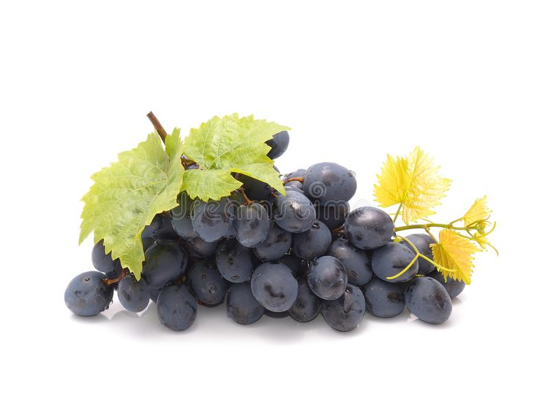 Grapes with green leaf stock photos
