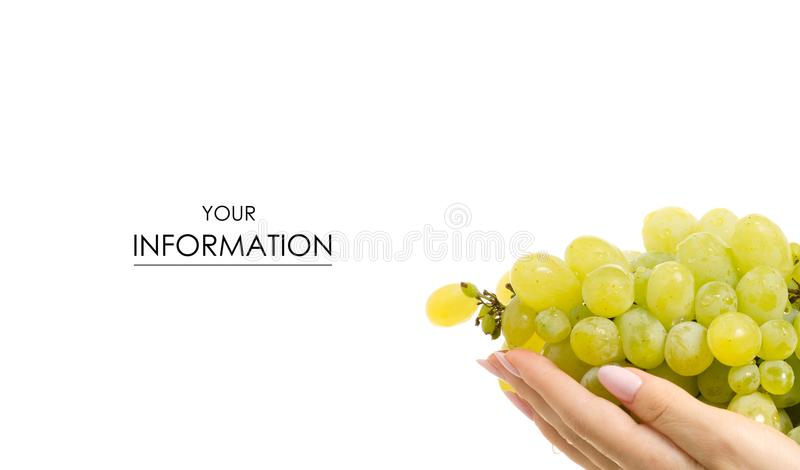 Grapes in hands pattern royalty free stock images