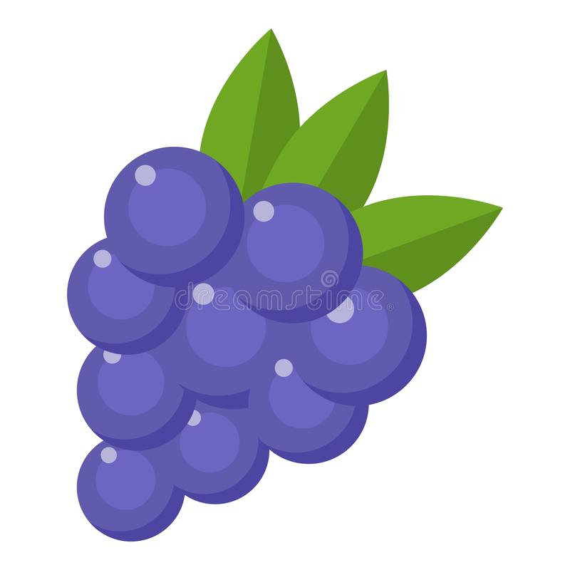 Grapes icon, flat style vector illustration