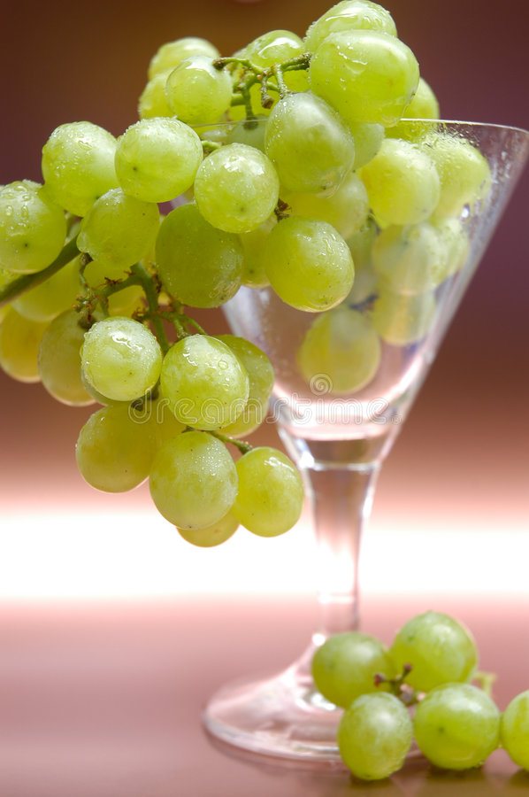 Grapes III royalty free stock image