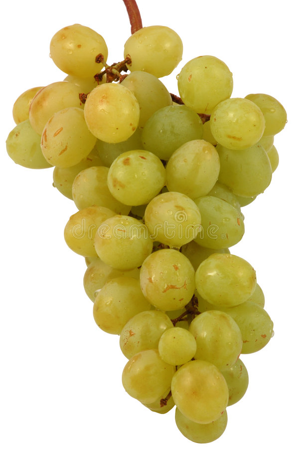 Grapes isolated on white. Grapes isolated with clippingpath included stock images