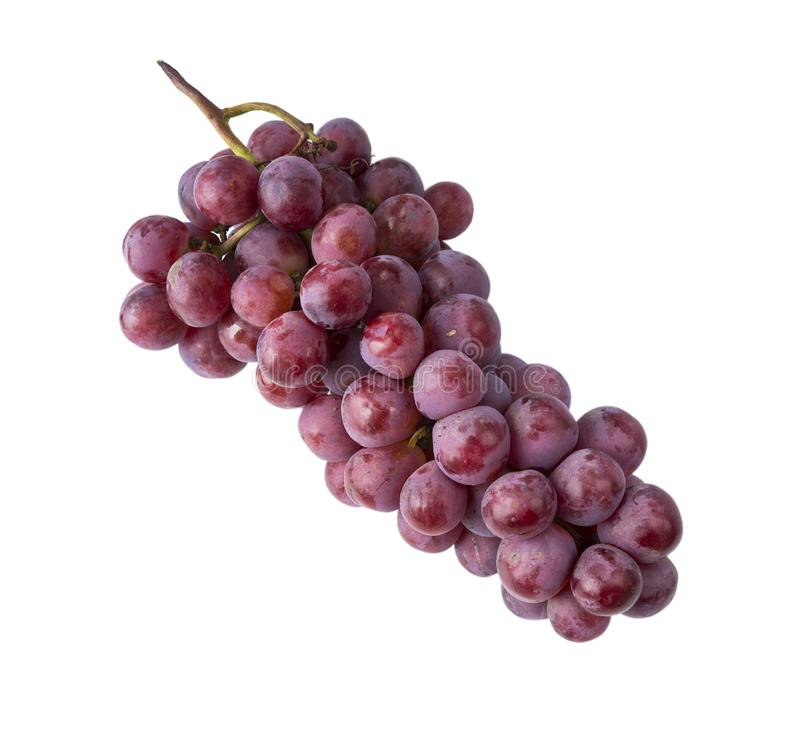 Grapes isolated on white background. Top view. Bunch of grape isolated on white background. Red grape isolated on the white backg. Round. Pink bunch grape stock photography