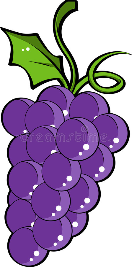 Grapes with Leaves stock illustration