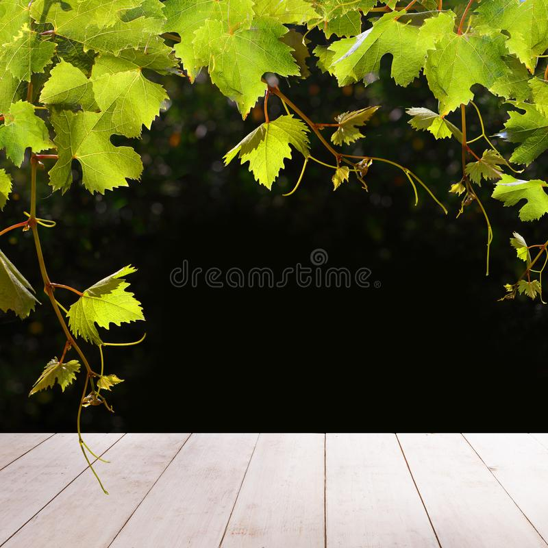 Grapes leaves and white empty wooden table.  vector illustration