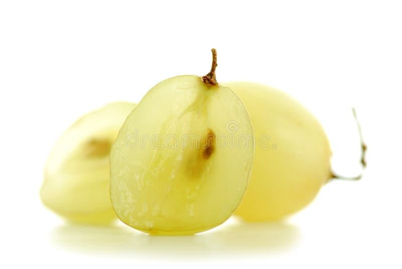 Grapes macro stock images