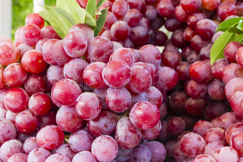 Download Grapes On Market Stand Stock Photography - Image: 24236192