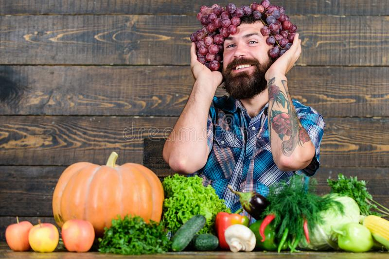 Grapes from own garden. Farmer hold grapes harvest on head. Man hold grapes wooden background. Farmer bearded guy with. Homegrown harvest grapes put on head royalty free stock images