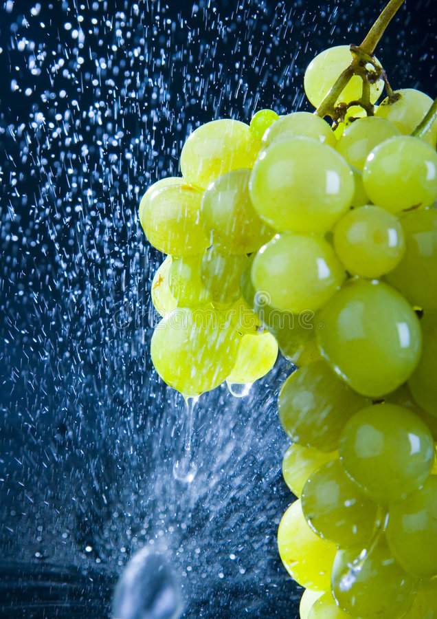 Download Grapes in the rain stock image. Image of figure, beauty - 2180831