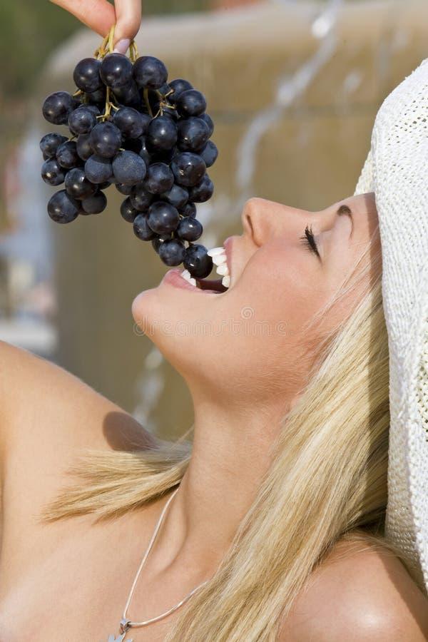 grapes summertime στοκ εικόνες