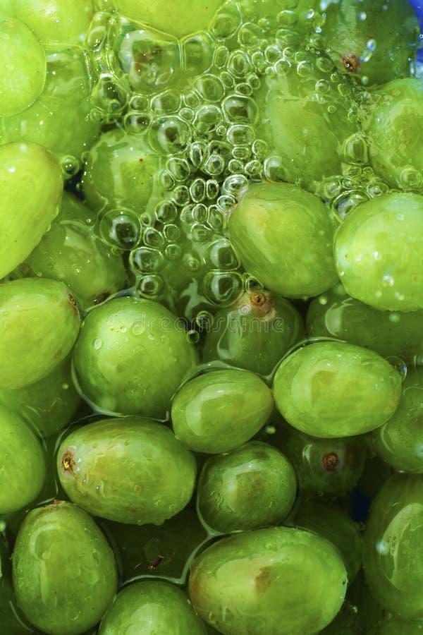 Grapes texture stock photo