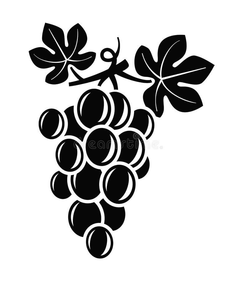grapes vector stock vector illustration of grape silhouette 47323653 rh dreamstime com graph vectors desmos graph vector equation