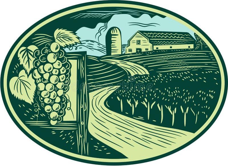 Grapes Vineyard Winery Oval Woodcut vector illustration