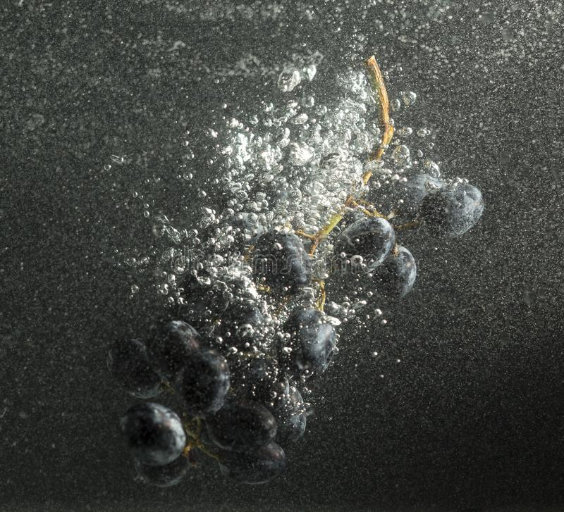 Grapes in water with splashes on a black background stock photography