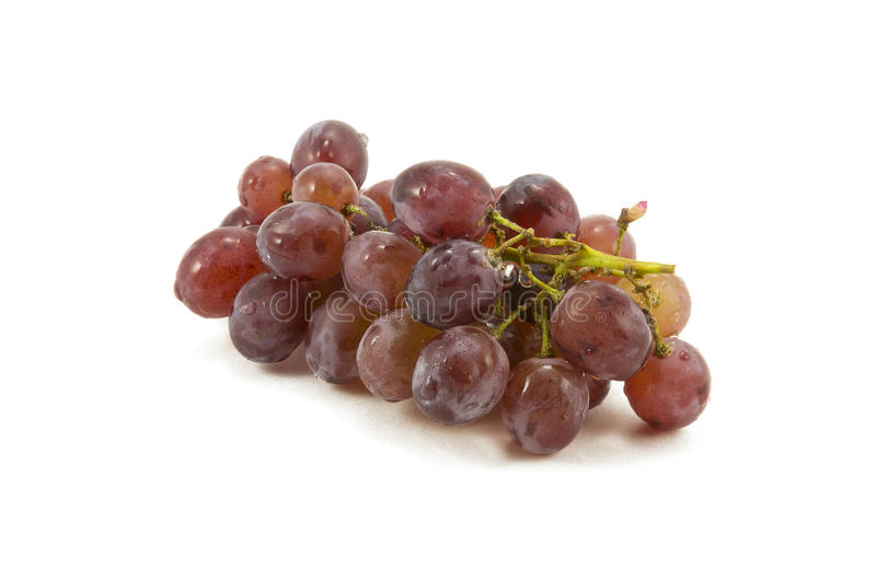Grapes on a white background royalty free stock photography