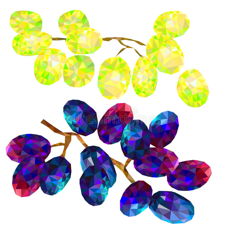 Grapes white and blue triangles isolated on white background. Set of grape, yellow and blue, isolated on white background, vector illustration, polygon drawing vector illustration