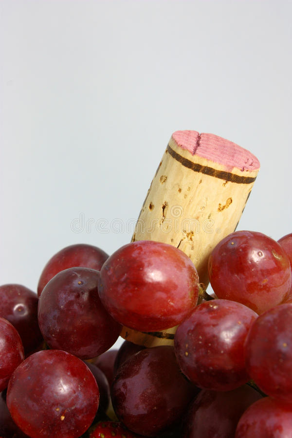 Grapes For Wine Stock Photos
