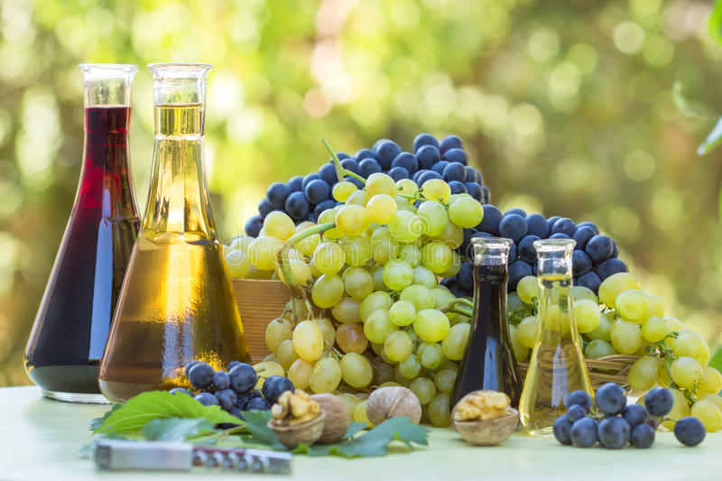 Grapes and wine in the bottles stock photography