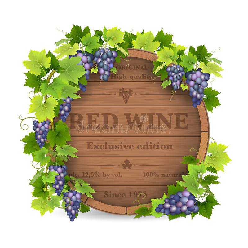 Grapes and wooden barrel. Barrels for wine and vine with grapes stock illustration