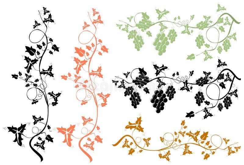 Download Grapevine stock vector. Illustration of decor, element - 11091480