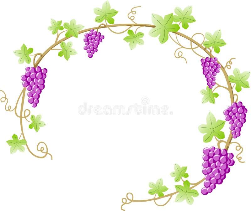 grapevine иллюстрация штока