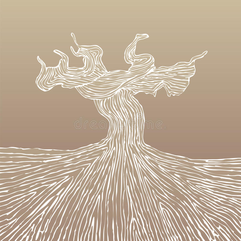 Grapevine trunk vector illustration stock photo