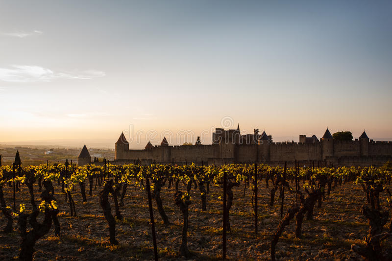 Download Grapevines Glow In Sunset Walled City Ramparts Stock Images - Image: 26081374