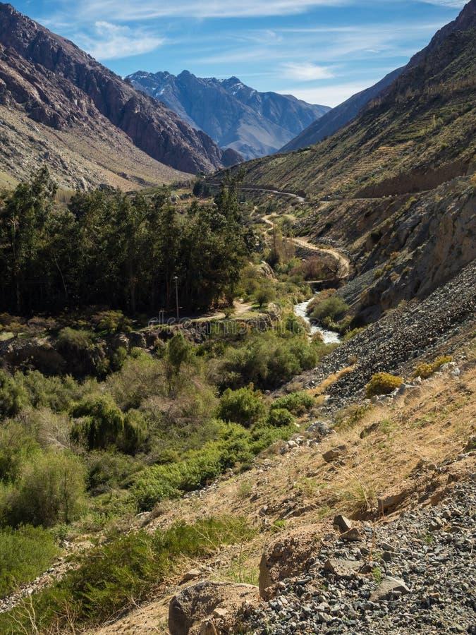 Grapeyard, winnica Elqui doliny, Andes część Atacama pustynia obrazy royalty free