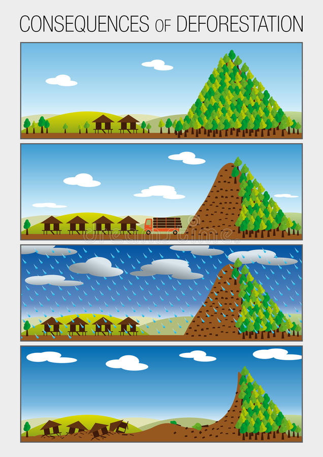 Graph shows in 4 steps the consequences of deforestation of forests that cause landslides vector illustration