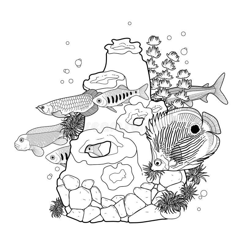 fish aquarium decorations coloring pages | Graphic Aquarium Fish With Coral Reef Stock Vector ...