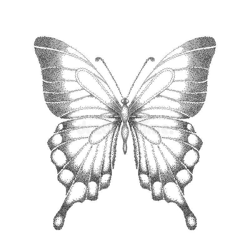 Contour Line Drawing Butterfly : Graphic black and white butterfly hand drawn cont stock