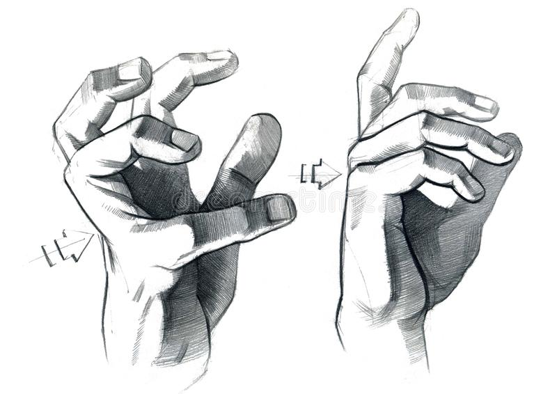 Graphic drawing with a graphite pencil of hands with different gestures of fingers. vector illustration