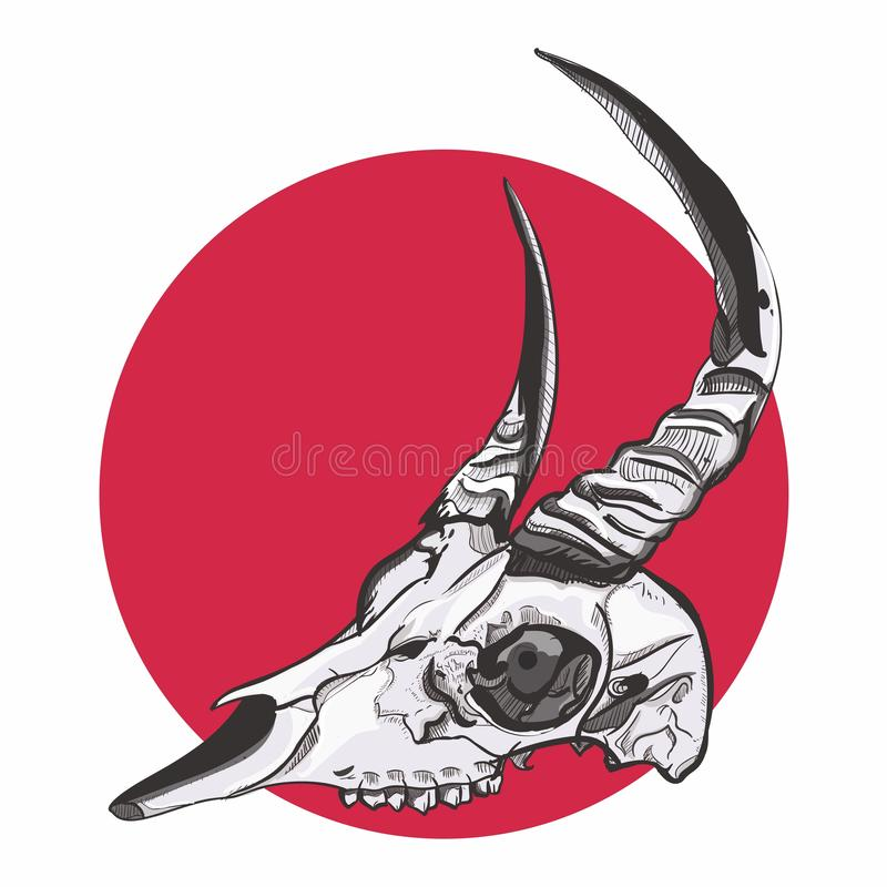 Graphic drawing | Animal Skull head. Graphic drawing using inking style. Unique look could be useful for T-shirt prints, books, canvas and another way to use royalty free illustration