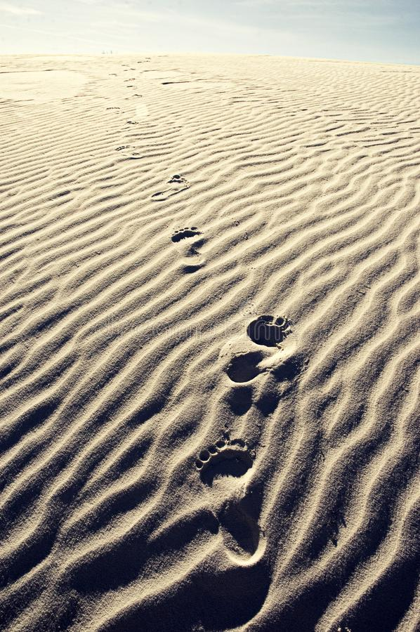 Foot Prints In The Sand Dune stock images