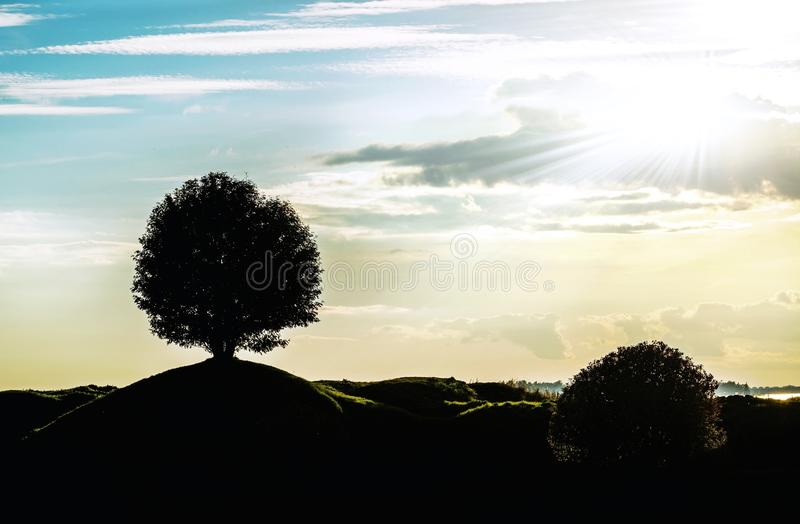 Download Graphic Landscape Silhouette With A Signal Tree Stock Photo - Image of lone, landscaped: 39512158