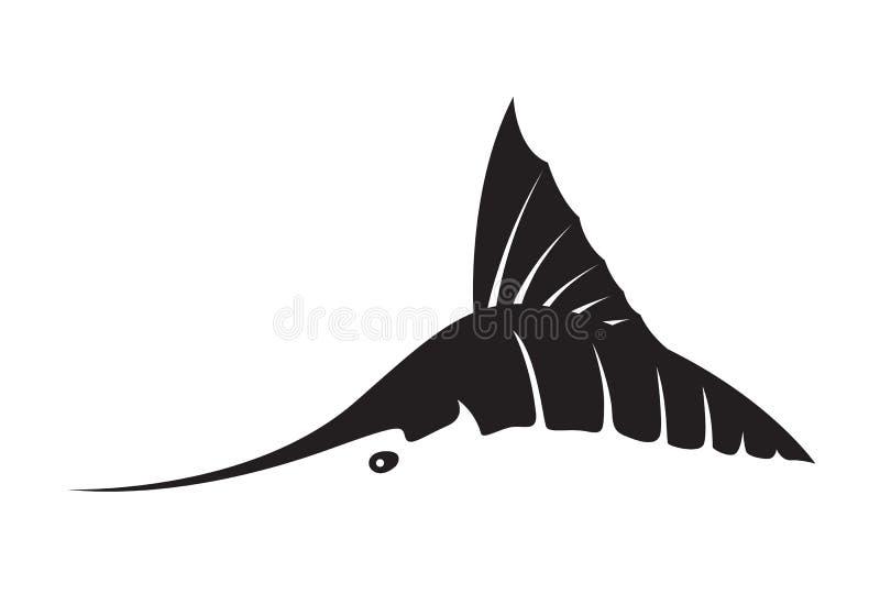 Graphic marlin fish, vector stock illustration