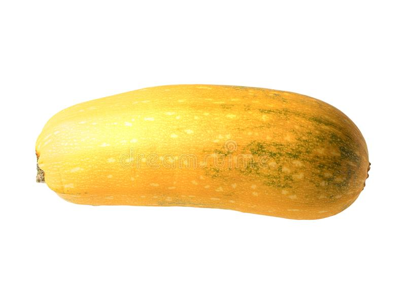 Graphic resources of isolated vegetable marrow fruit object on a white background stock photos