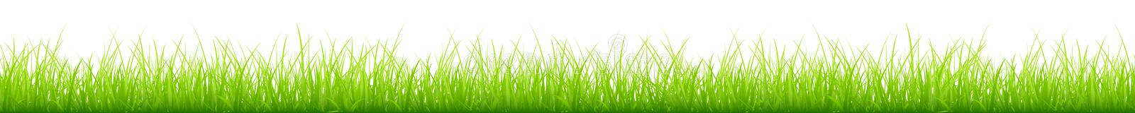 Graphic Slim Green Meadow Different Heights Long Horizontal Banner vector illustration