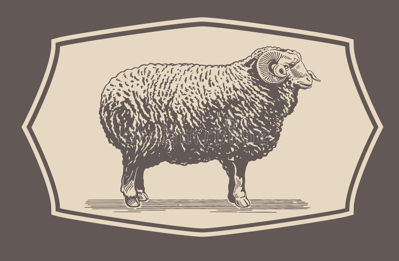Graphical Ram, Sheep vector illustration
