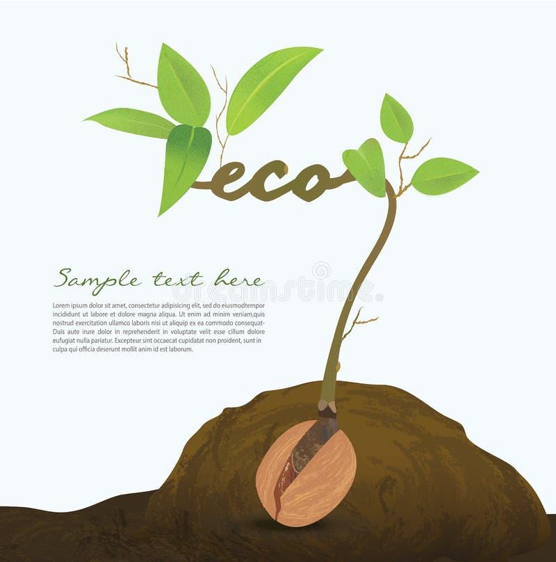 Graphique créatif d'infos d'abrégé sur idée de graine, concept illustration libre de droits