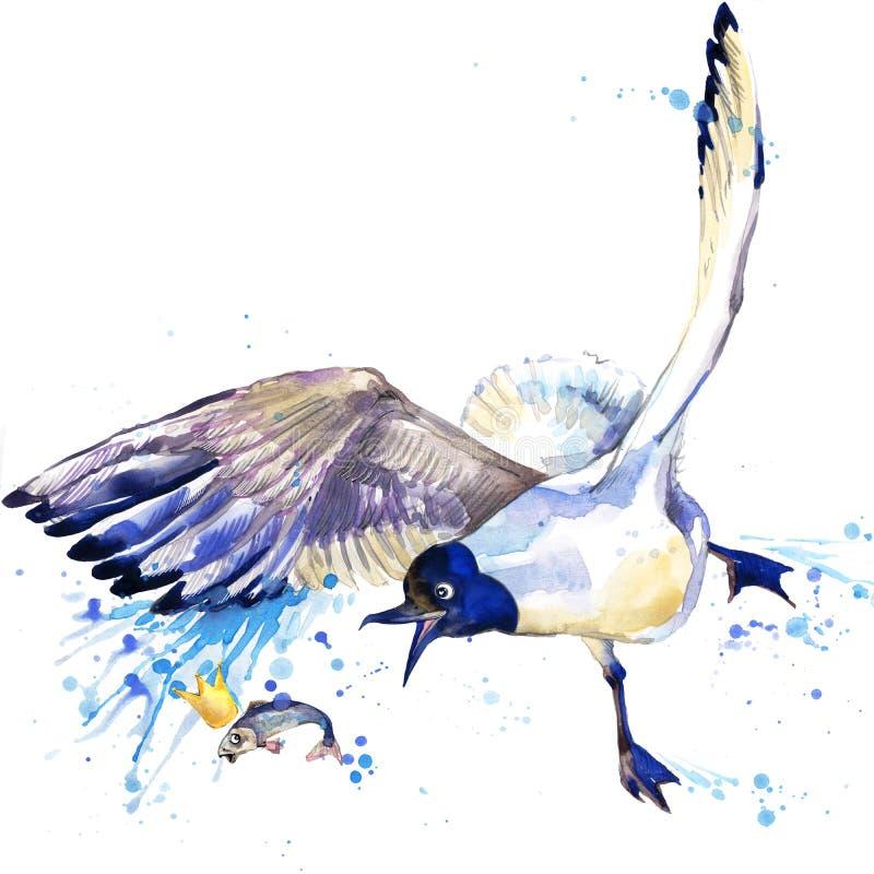 Graphiques de T-shirt de mouette illustration de mouette avec le fond texturisé d'aquarelle d'éclaboussure seagul peu commun d'aq illustration libre de droits
