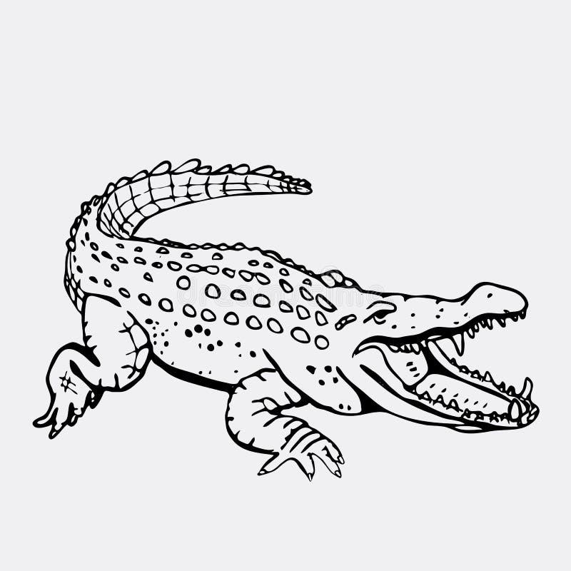 Graphiques tirés par la main de crayon, crocodile, alligator, croc Gravure, style de pochoir Logo noir et blanc, signe, emblème illustration de vecteur