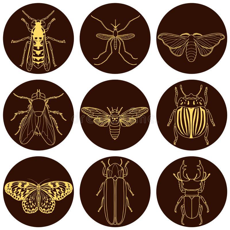 Graphismes d'insecte réglés image stock