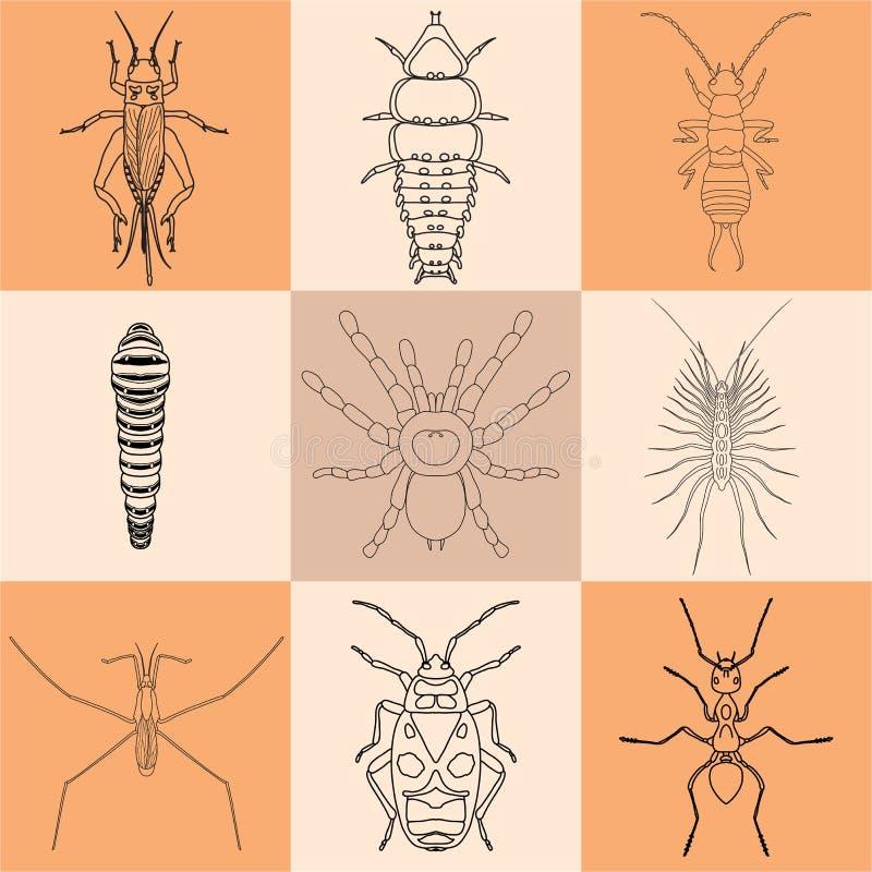 Graphismes d'insecte réglés images stock