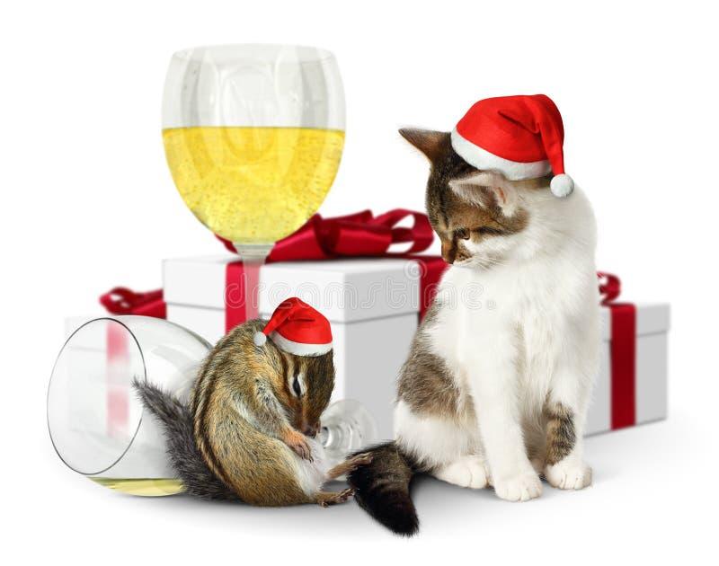 Grappig Kerstmisconcept, gedronken eekhoorn en kat met santahoed en gi stock fotografie