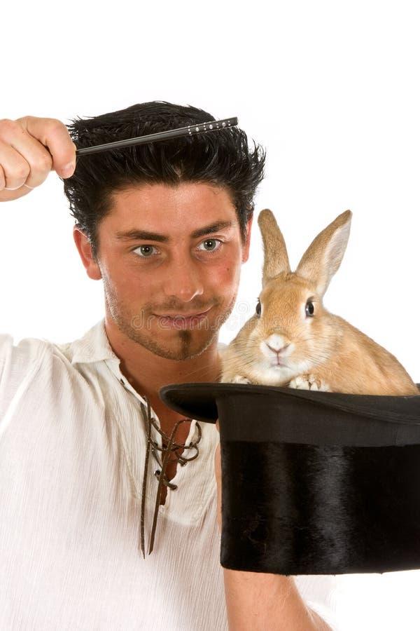Grappig konijn royalty-vrije stock foto's
