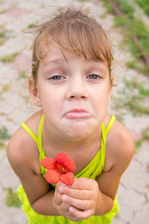 Grappig meisje met een bloem in haar gebogen hand bedelend een gezicht die aan het kader kijken stock foto's