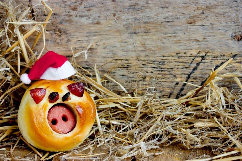 Grappig varkensbroodje in santahoed royalty-vrije stock foto