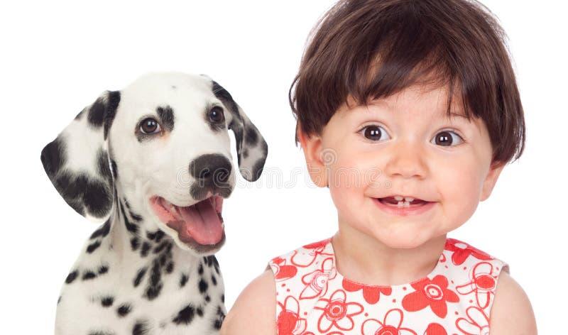 Grappige baby met een mooie Dalmatische die hond op witte bedelaars wordt geïsoleerd royalty-vrije stock afbeelding